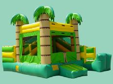 Tropical Mini Slide as low as $149.00 a day dry or $199.00 a day wet. Includes a jumping area, a climbing ramp and small slide.  This unit is ideal for kids up to age 6.  Unit dimensions are 15w*18d.